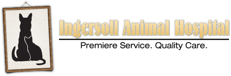 Ingersoll Animal Hospital Home